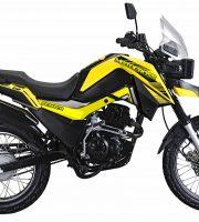 Motocross Fighter 150 Yellow